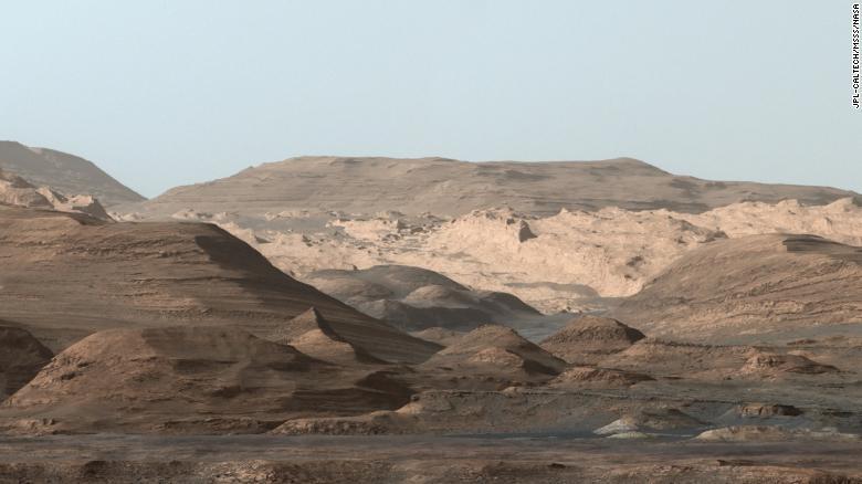 Curiosity Mart