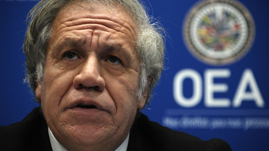 More than 20 organizations are calling on the OAS to intervene to end the dictatorship in El Salvador