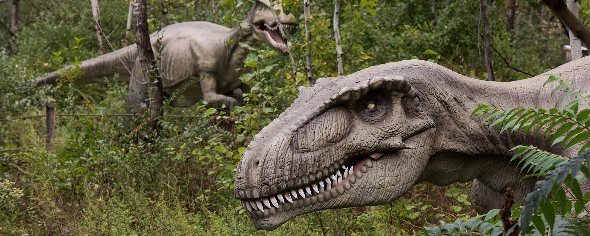 Life-size animatronic dinosaurs are seen at Field Station: Dinosaurs, a 20-acre outdoor Jurassic learning expedition and family tourist attraction in Secaucus, NJ Thursday, September 25, 2014 - Sputnik Mundo, 1920, 02.07.2021
