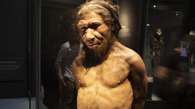 A 51,000-year-old bone reveals the symbolic ability of a Neanderthal