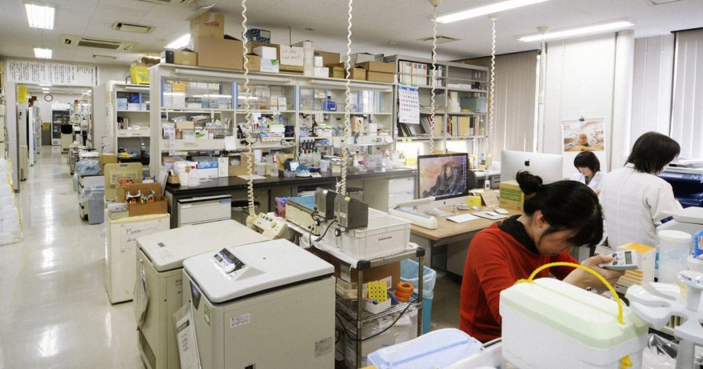 Japan has the lowest percentage of women studying science: OECD report